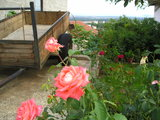 Trailer and Roses in Medjugorje